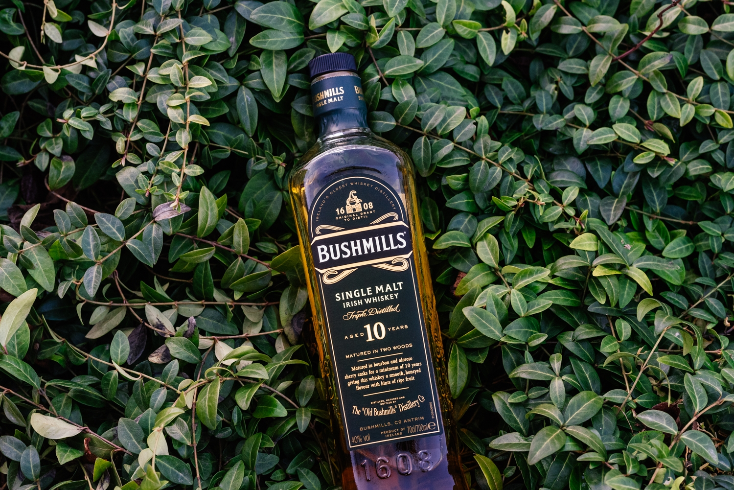 You are currently viewing Bushmills 10 Jahre