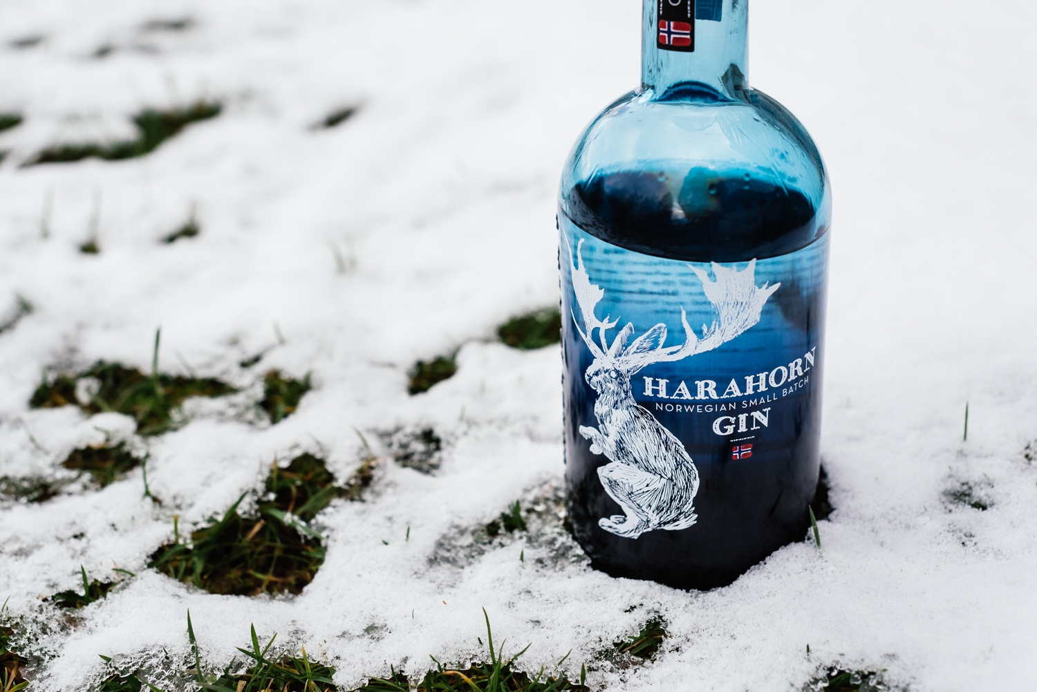 You are currently viewing Harahorn Gin | Small Batch Gin aus Norwegen